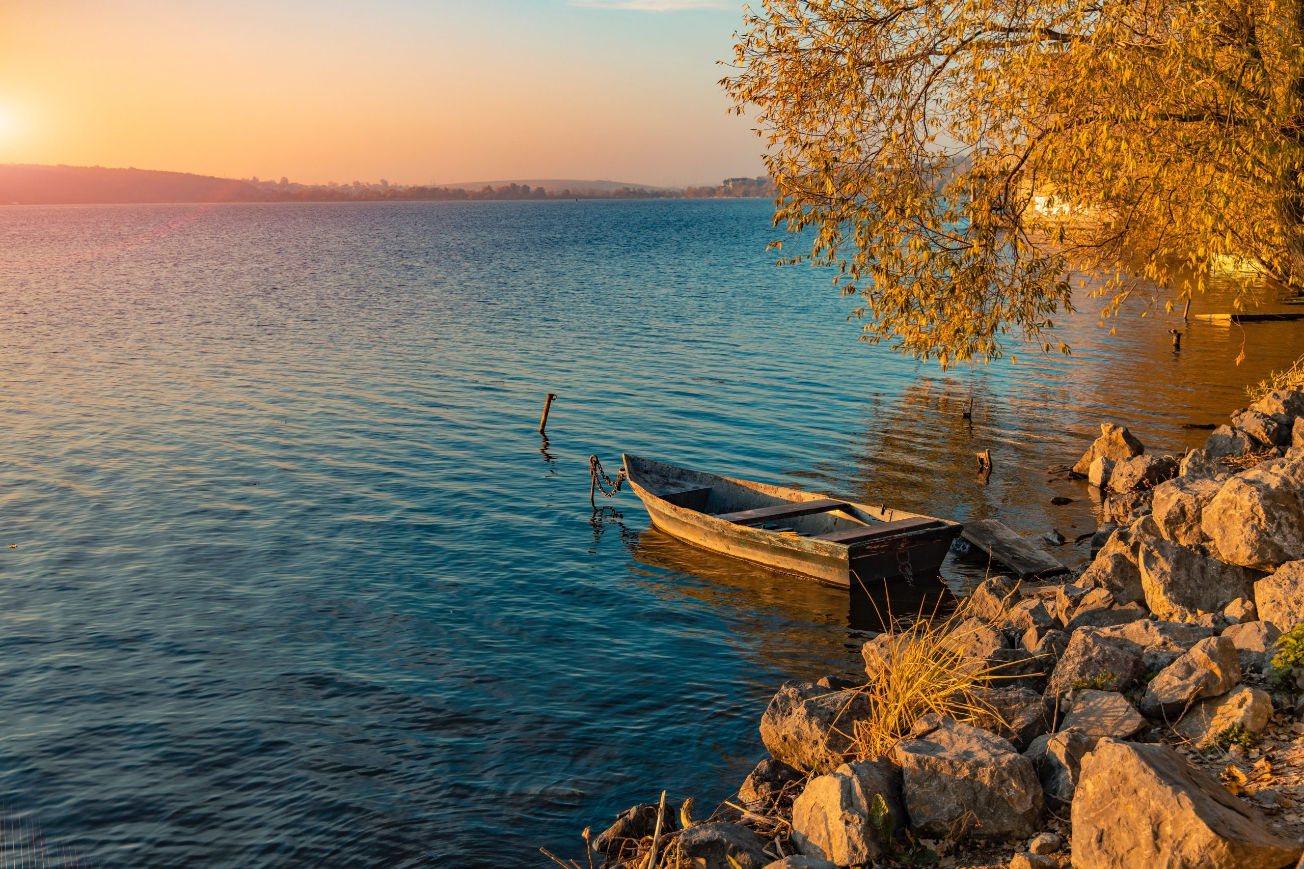 A Boat on the lake in Ternopil